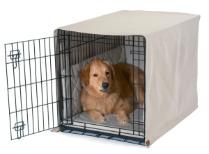 Prepare Crate for Your new Dog