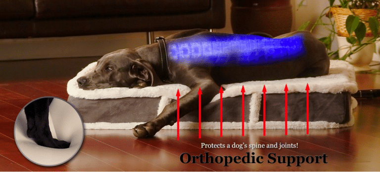 Top 10 Best Orthopedic Dog Beds | Reviews – Buying Guide – Comparisons