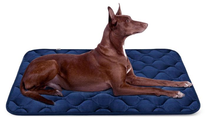 Dog Bed Mat by HeroDog