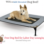 Giveaway Free Dog Bed