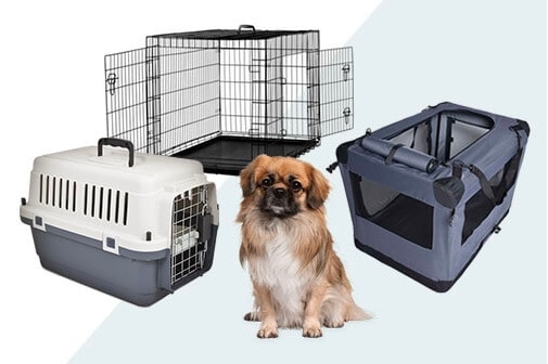 Top 6 Best Dog Crates Reviews and Recommendation