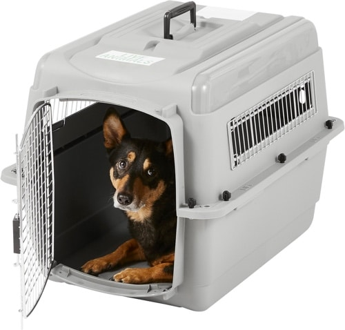 Best Plastic Dog Crate​