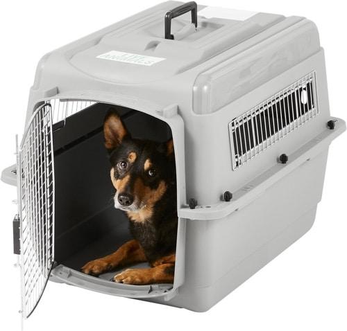 Best Plastic Dog Crate
