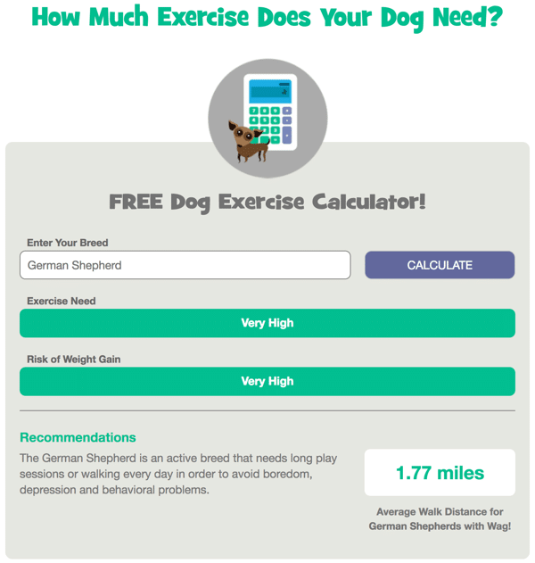 Free Dog Exercise Calculator