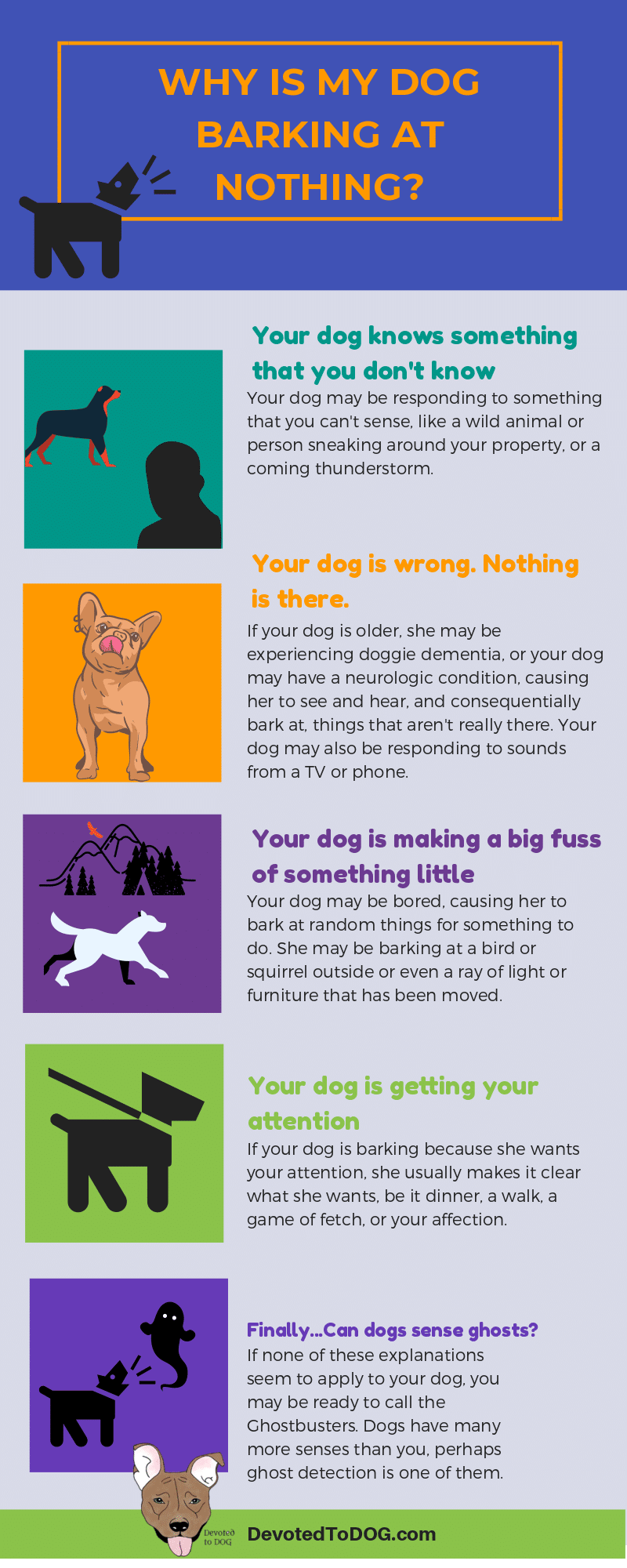 Why do Dogs Bark at Nothing?