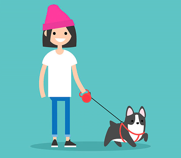 Will Your Dog Get Enough Exercise by Walking