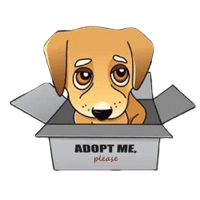 Dog Adoption Guides