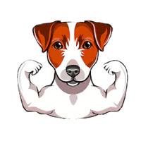Healthy Dog Guides
