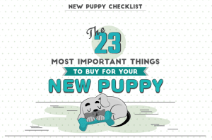 What to buy for a new puppy