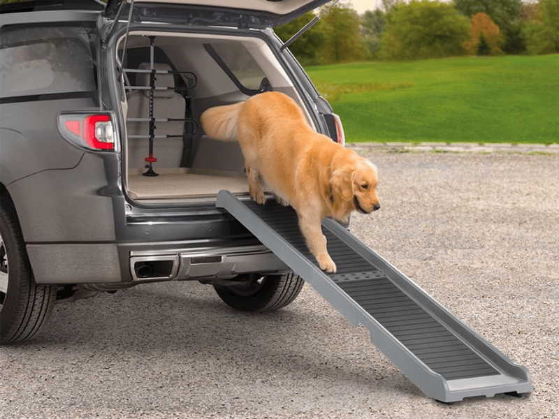 Best Dog Ramps for Car SUV